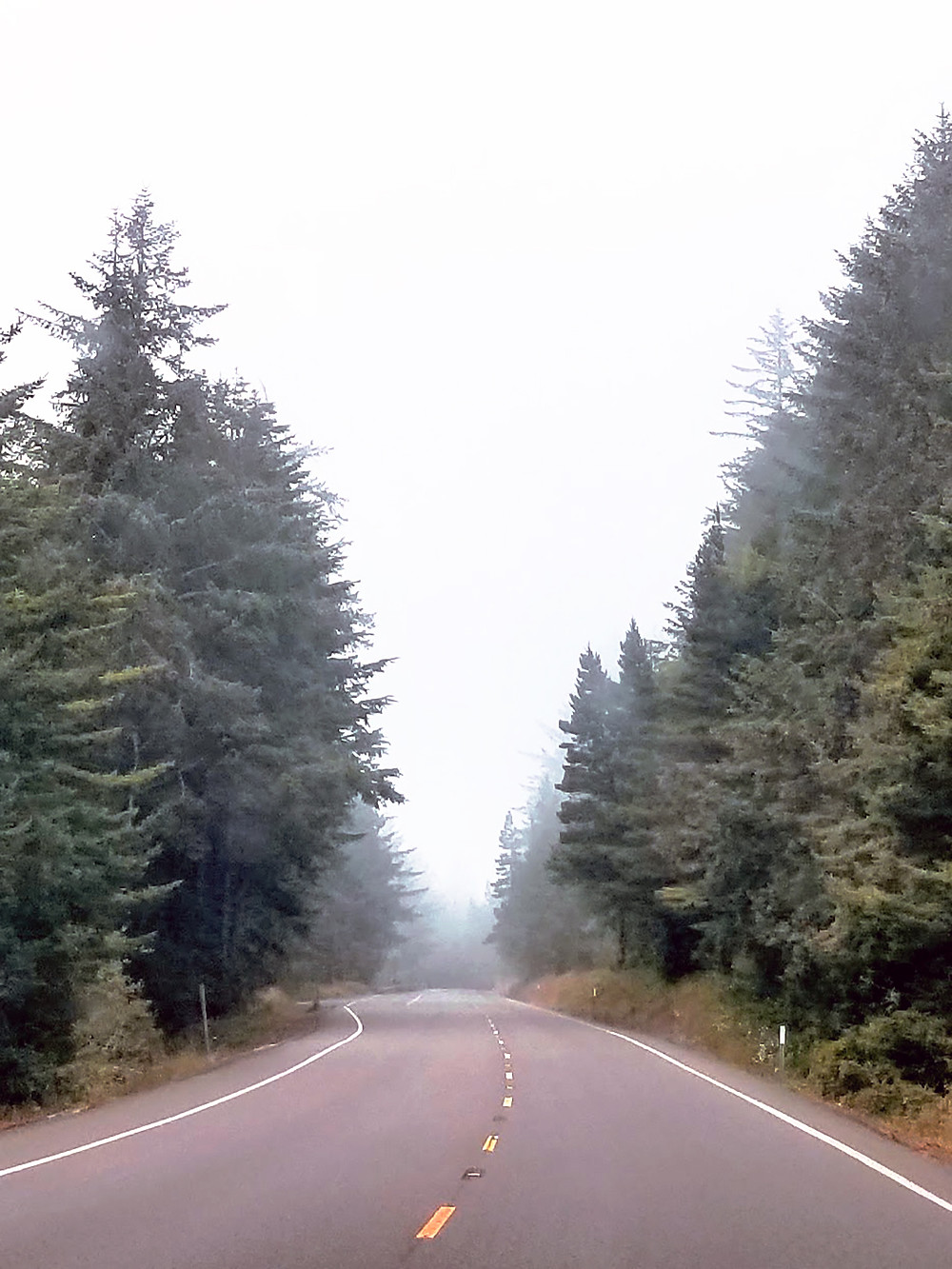 The road to Corvallis