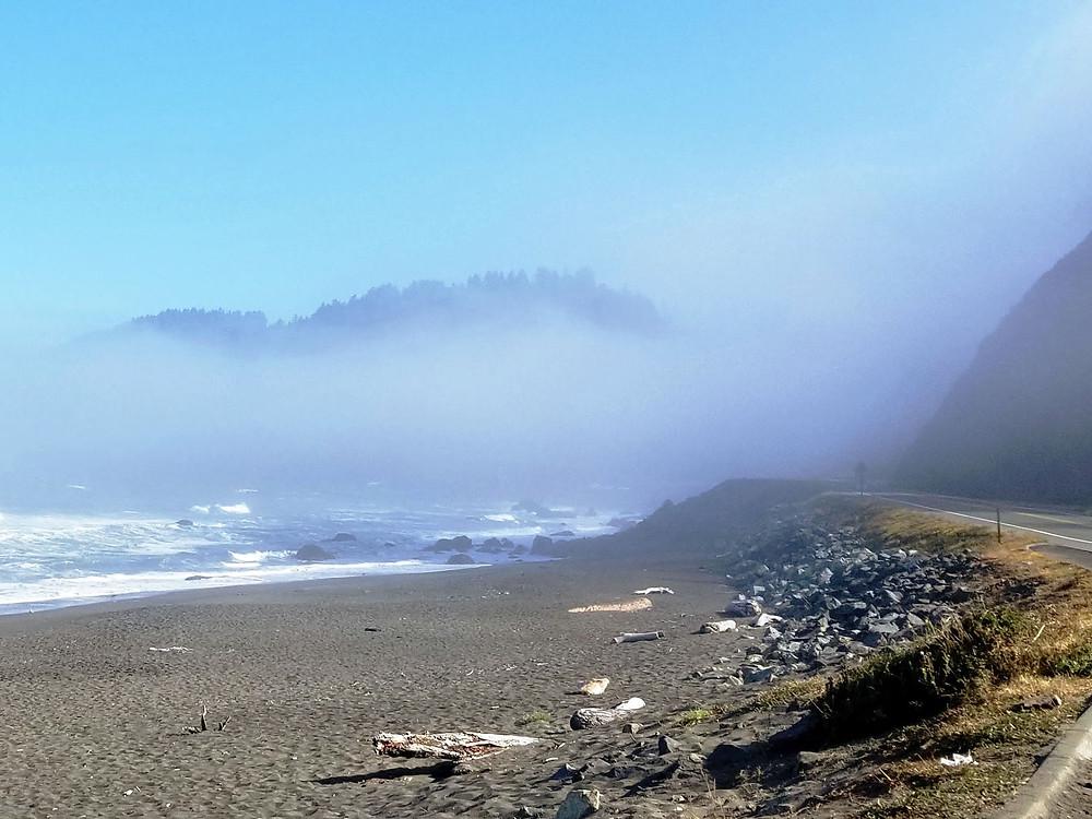Beach near the Redwoods in California