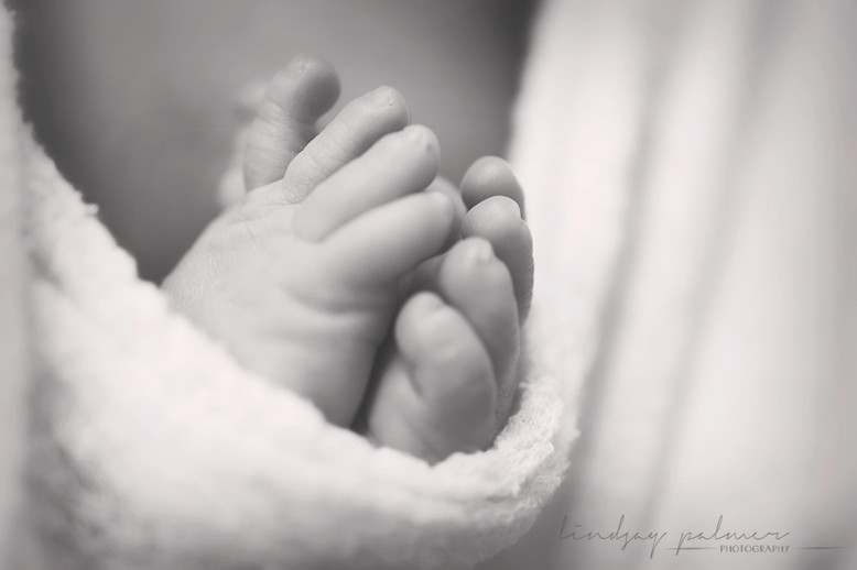 Yankton Newborn Baby Photographer Photos Lindsay Palmer Photography