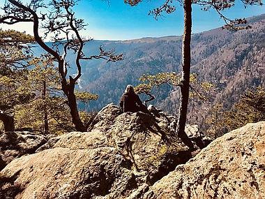 Wanderung Schwarzwald Felsenweg.jpg