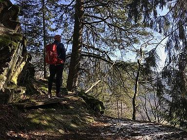 Wandertouren Schwarzwald Noppelfelsen