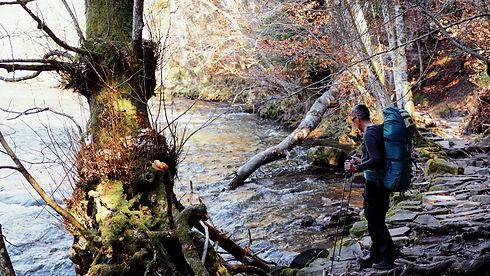 Wander Coaching Schwarzwald