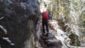 Wanderung Kandel | Zweribach Wasserfall