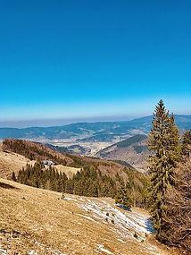 Hinterwaldkopf schwarzwald 4.jpg