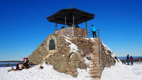 Wanderung im Schwarzwald | Kandel