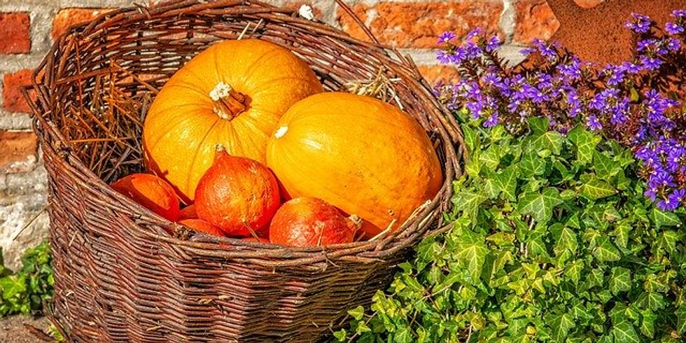 Our Autumn Online Show