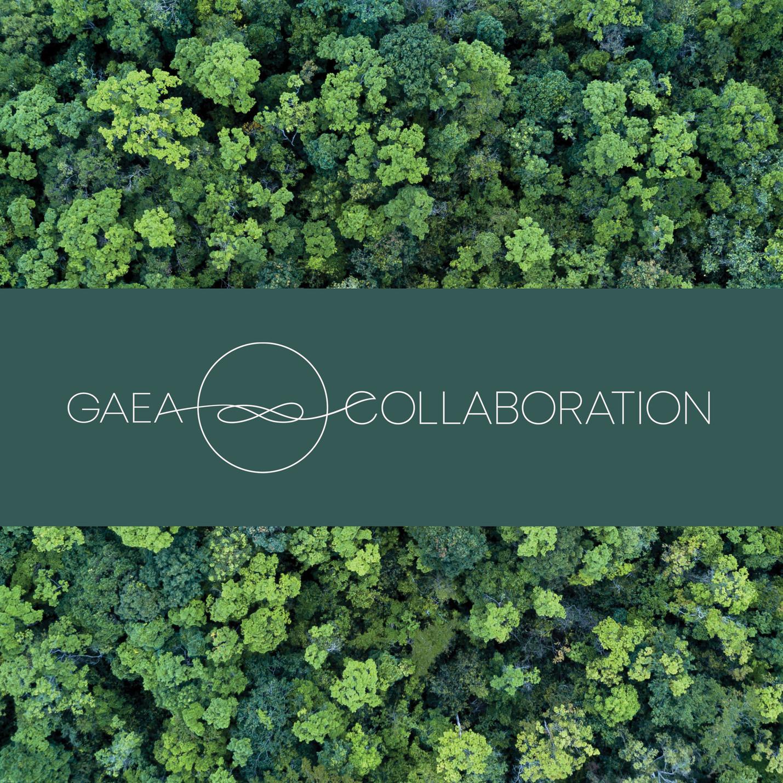 CG_Insta post Logo Gaea1.jpg
