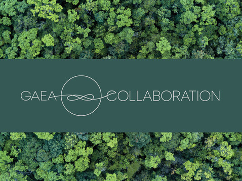 Gaea Collaboration.jpg