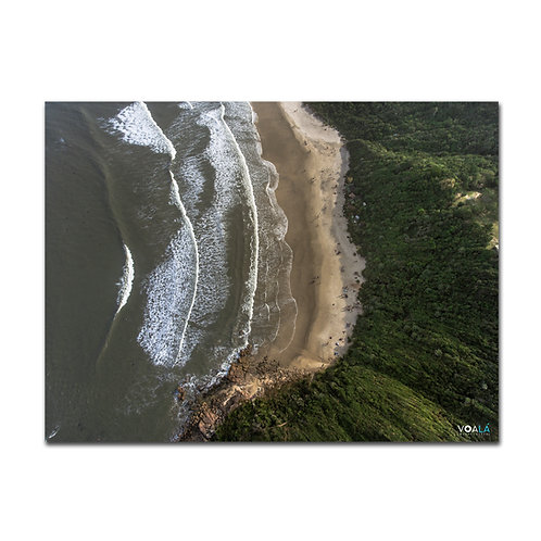 Quadro Rosa Norte - Praia do Rosa -SC