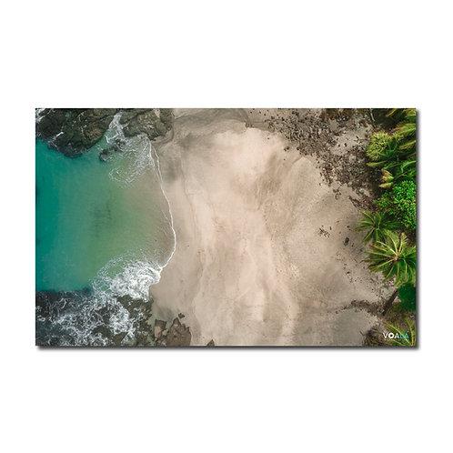 Quadro Praia e Coqueiros - Costa Rica