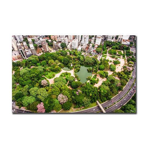 Quadro Parque Moinhos de Vento - Porto Alegre - RS