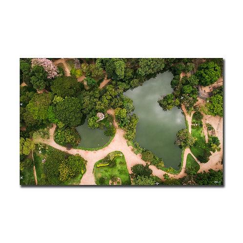 Quadro Lagos Parque Moinhos de Vento - Porto Alegre - RS