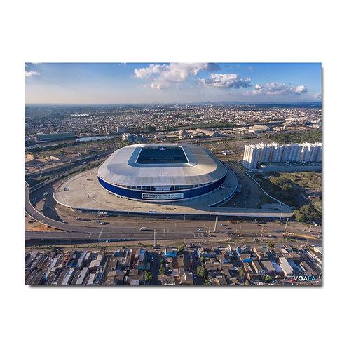 Quadro Arena do Grêmio II - Porto Alegre - RS