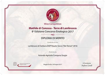 diploma-sorbara.jpg