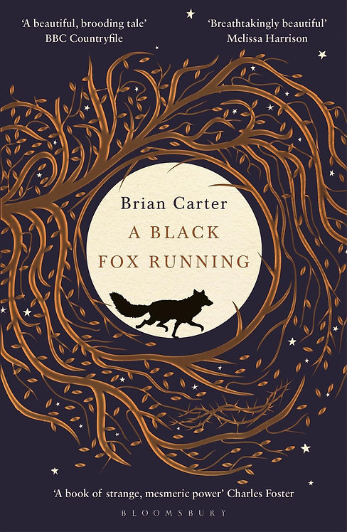 A Black Fox Running Brian Carter