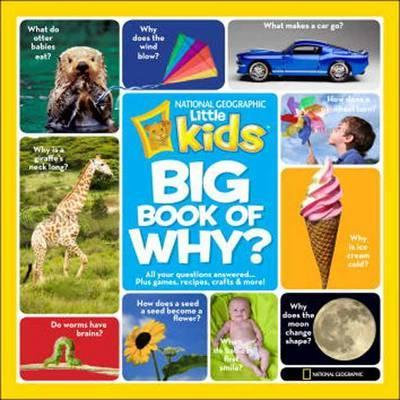 Little Kids First Big Book of Why by Amy Shields