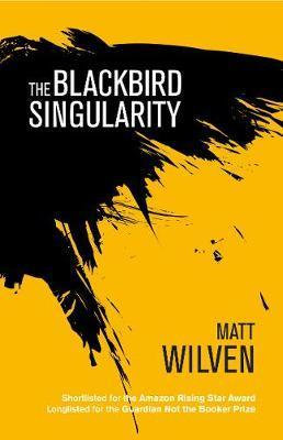 Blackbird Singularity by Matt Wilven