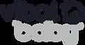 Generic_Normal Vb Logo CoolGrey4&532.png