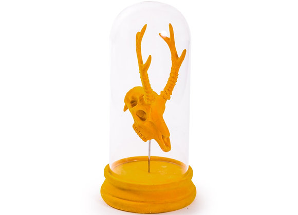 Quirky Flocked Orange Antelope Skull In Glass Dome