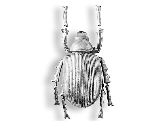 Funky Silver Ground Beetle Wall Decoration