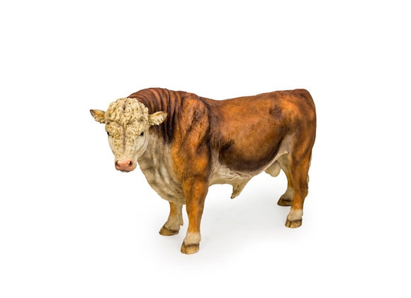 Large Hereford Bull Figure