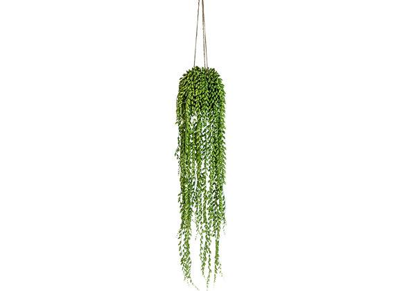 Ornamental Hanging String of Peals Vine Arrangement