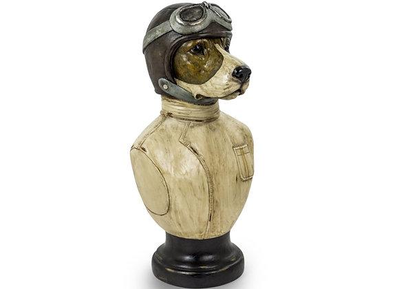 Racing Dog Bust