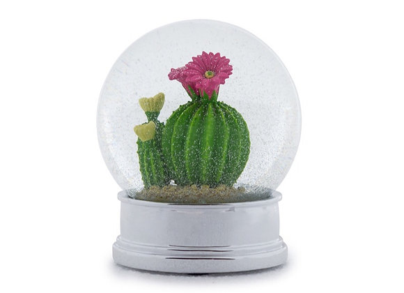 Quirky Decorative Cactus Snow Globe