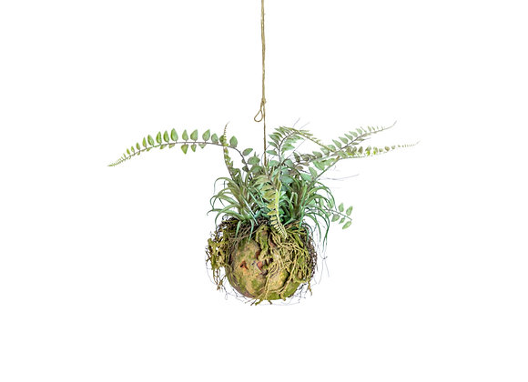 Quirky Ornamental Hanging Moss Ball with Ferns