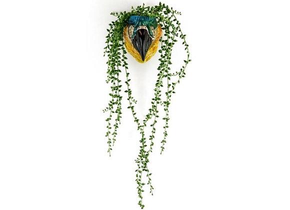 Ceramic Parrot / Macaw Head Vase