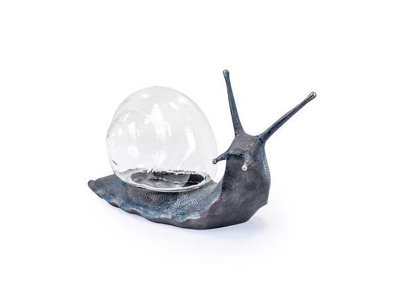 Large Bronzed Snail With Glass Storage
