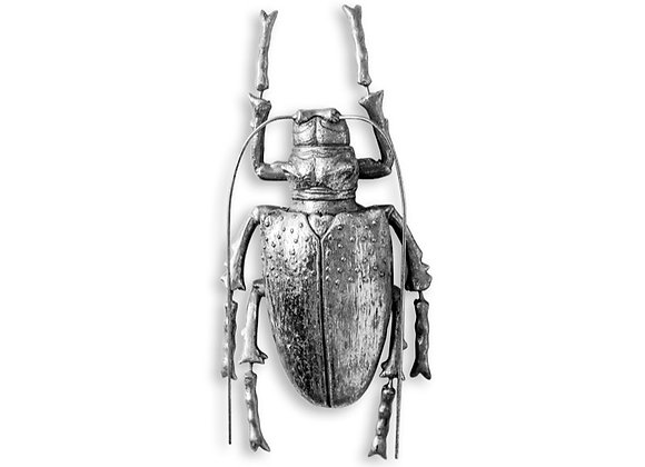 Quirky Silver Beetle Wall Decoration