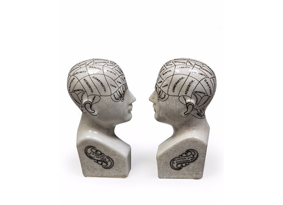 Pair Of Ceramic Phrenology Head Bookends
