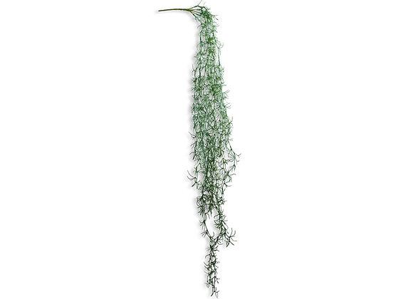 Ornamental Hanging Vine Plant Design 2