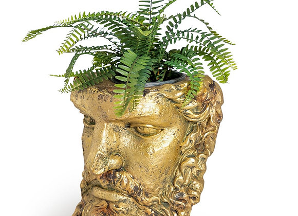 Funky Gold Classical Face Planter