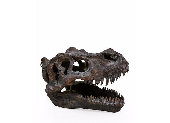 Extra Large T Rex Dinosaur Skull Wall Decoration