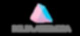 BOLSAARTEMODA logo.png