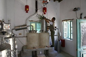 Herbal Distillery.jpg