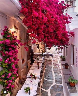 Myk flower street.jpg