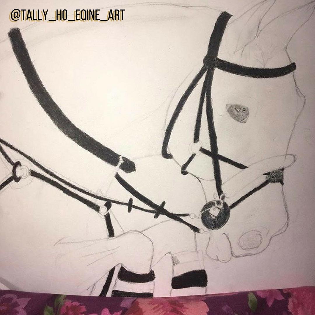 @tally_ho_eqine_art
