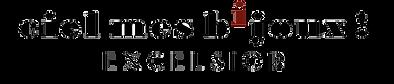 Logo Excelsior 2 sans fond.png