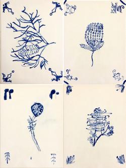 flora_4
