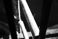 35mm film 1 - Talia Sinani