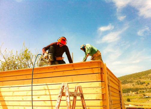 בניית בתי עץ בצפון