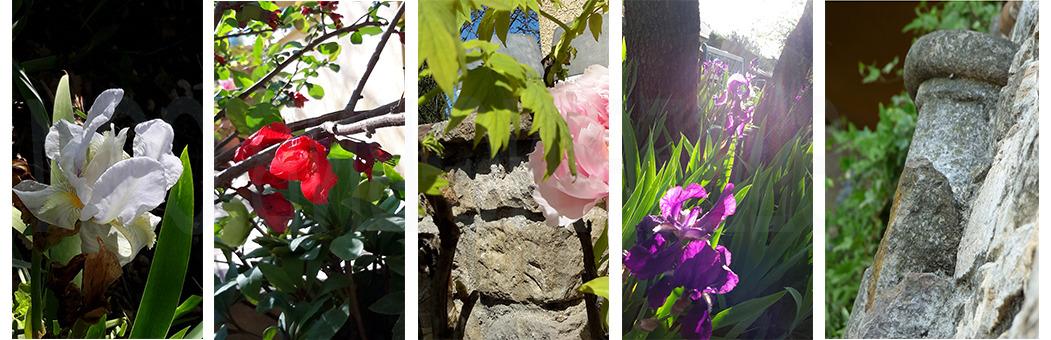 jardin omsleeping._edited