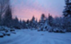 Winter Theme.jpg