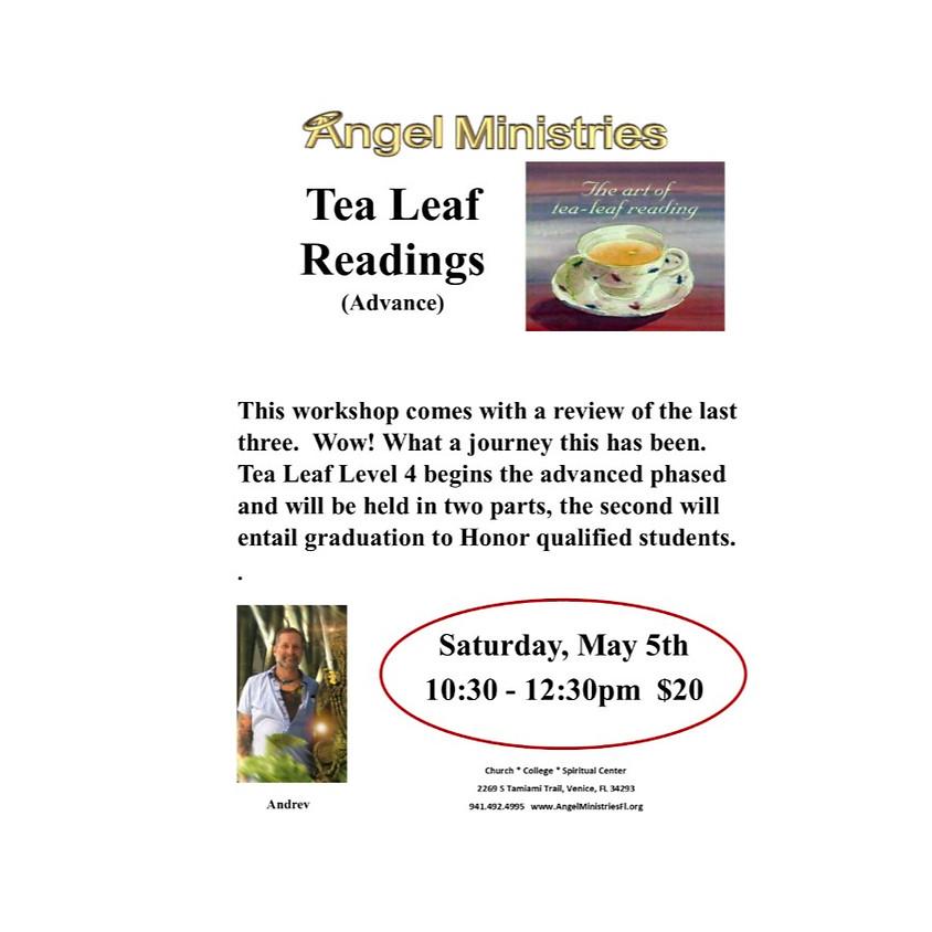 Tea Leaf Level 4