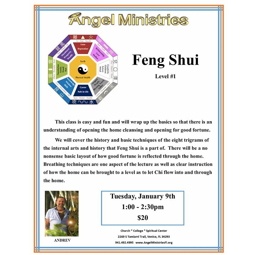 Feng Shui Level 1