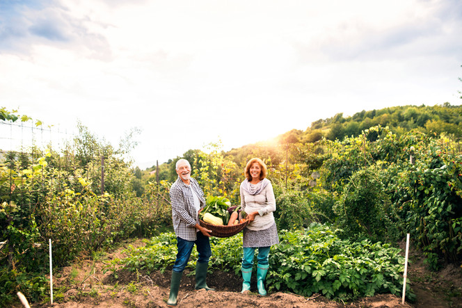 Angel Land Food Forest Inc