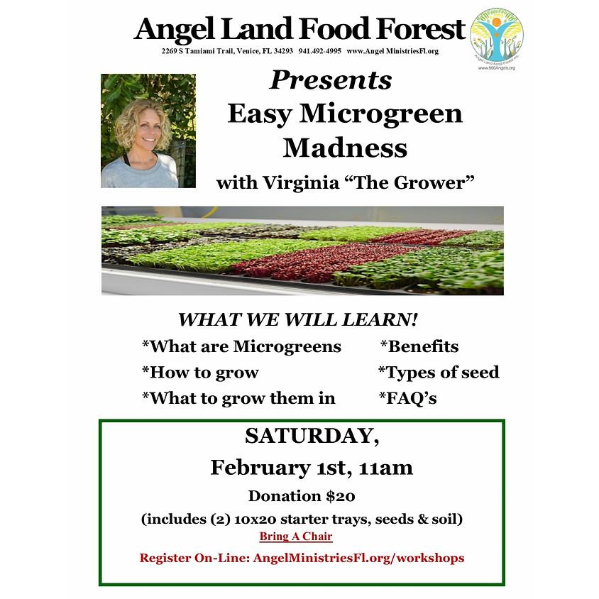 Easy Microgreen Madness